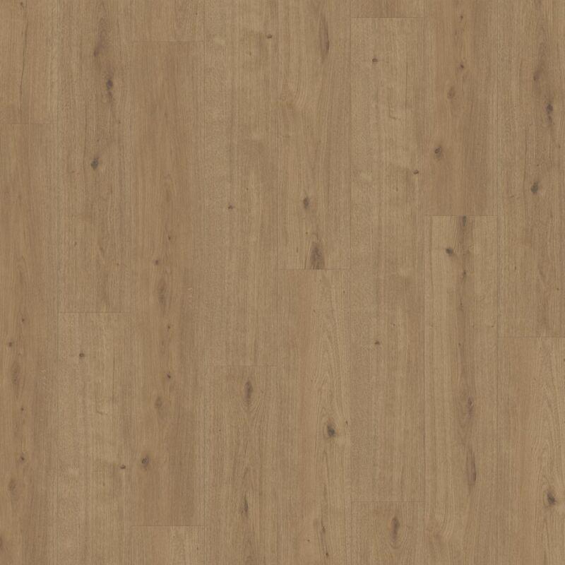 Modular ONE - Oak Atmosphere umber