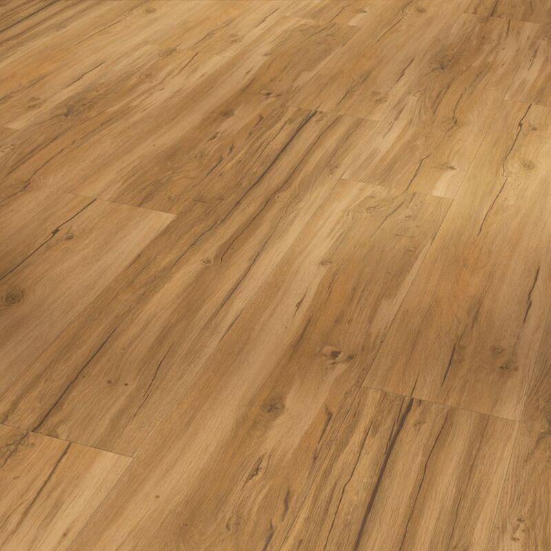 SPC vinyl - Basic 5.3 - Oak Memory natural