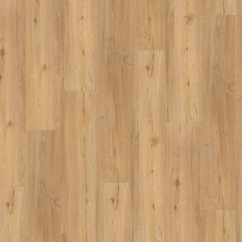 SPC vinyl - Basic 5.3 - Oak natural